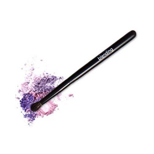 blending brush eye